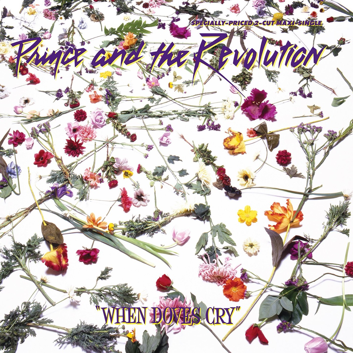 """Prince and the Revolution """"When Doves Cry"""" singles cover"""