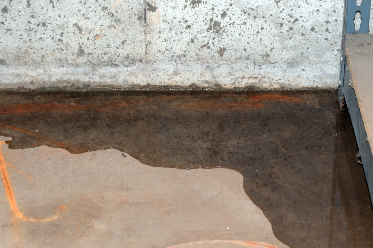 puddle in corner of basement