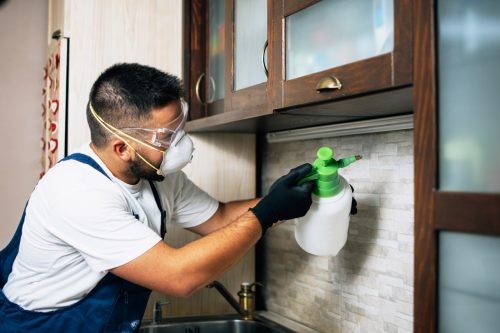 Professional exterminator in protective workwear spraying pesticide in apartment kitchen.
