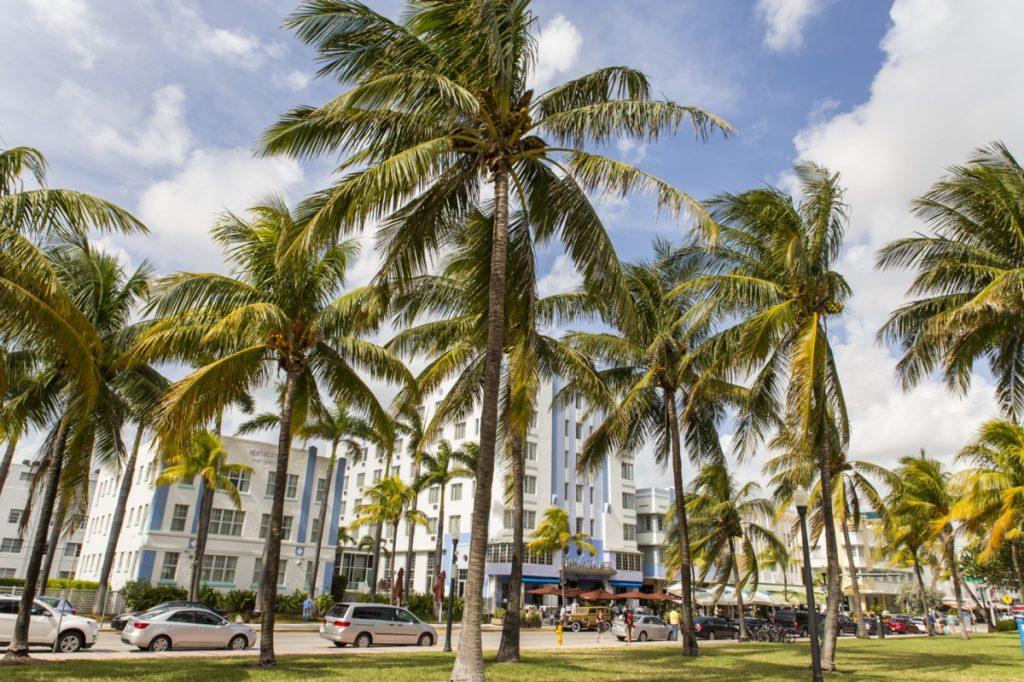 photo of Miami Beach, an city near Pinecrest, Florida