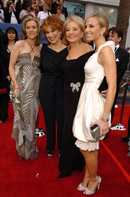 Meredith Vieira, Joy Behar, Barbara Walters, and Elisabeth Hasselbeck at the Daytime Emmy Awards in 2006
