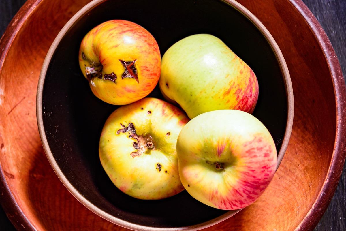 bowl of bruised apples