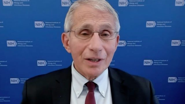 Fauci discusses Moderna booster on MSNBC on Sept. 30