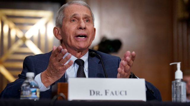 Dr. Anthony Fauci speaking at a senate hearing