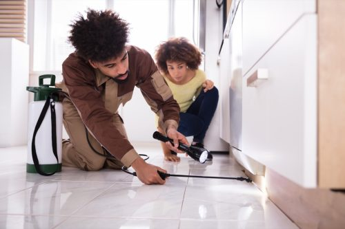 Woman Looking At Male Pest Control Worker With Torch Spraying Pesticide On Wooden Cabinet