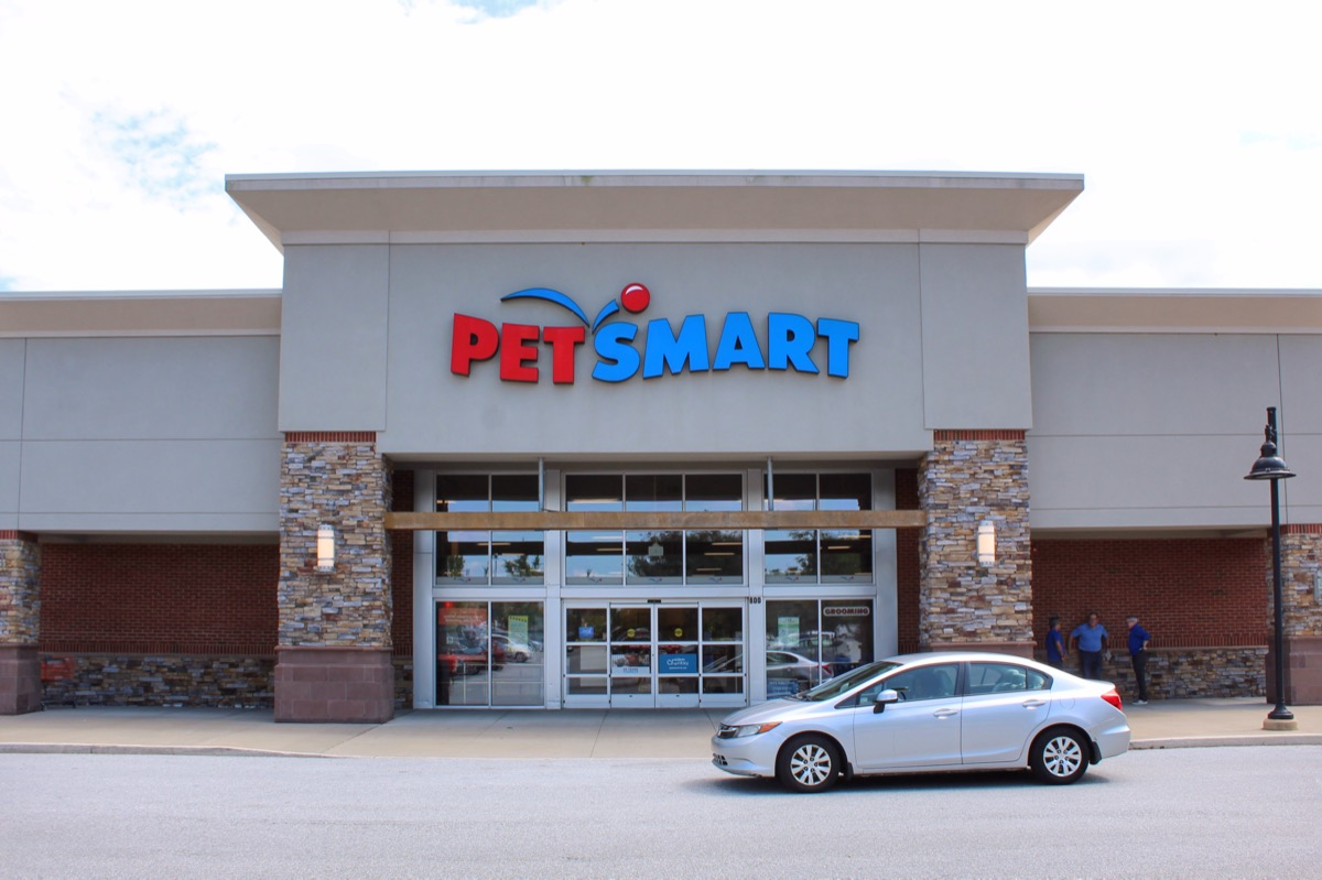 compact car parked outside petsmart store