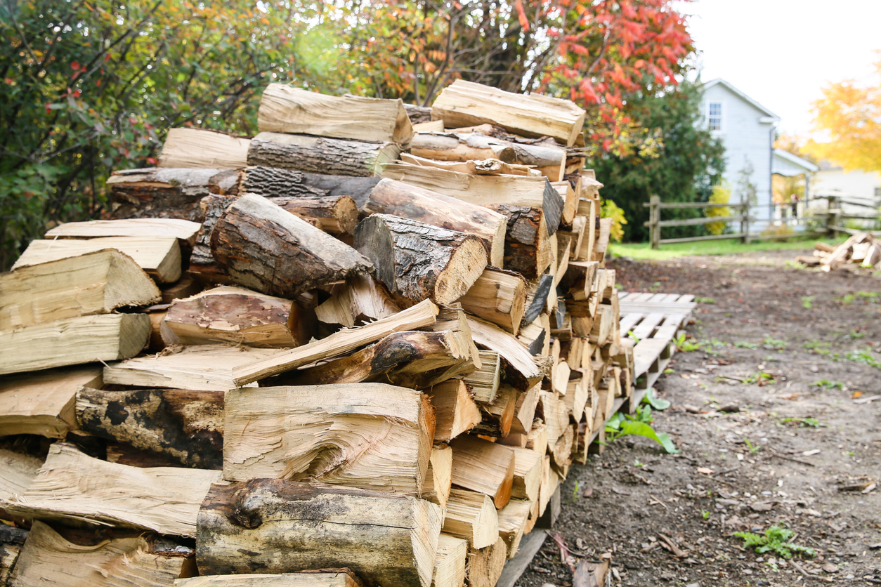A woodpile on palates behind a house