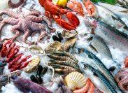 Seafood mix on ice