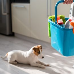 person holding blue bucket of cleaning supplies in kitchen with dog