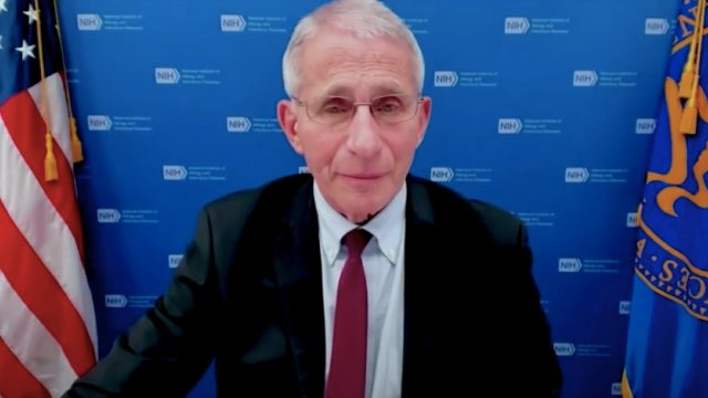 Fauci talking at an Oct. 13 White House press briefing