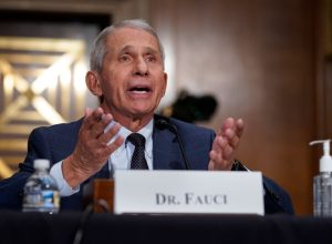 Dr. Anthony Fauci testifying before a senate committee