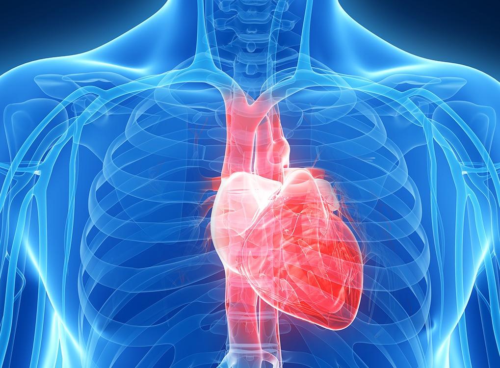 heart health angioplasty, Women's Health Myths