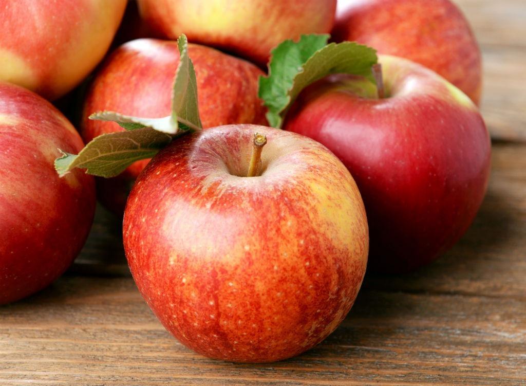 Apple Isaac Newton Bogus 20th Century Facts