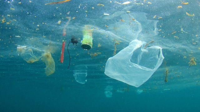 Garbage floating in ocean