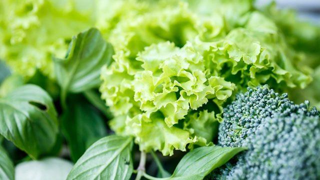 Up close shot of lettuce.