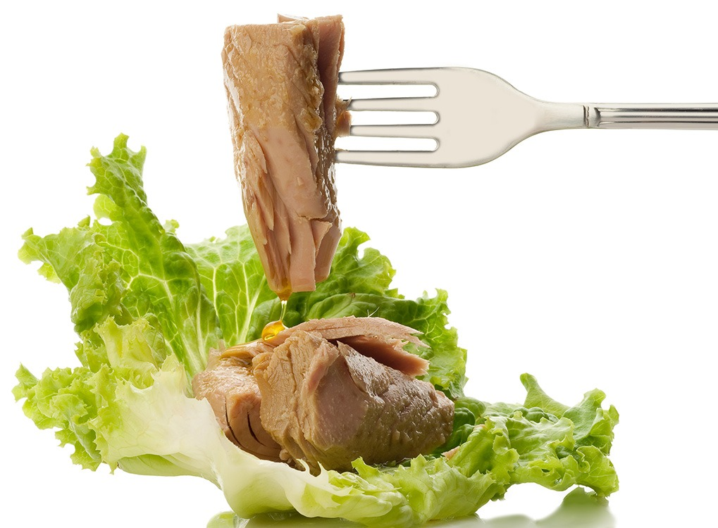 tuna, great food for your brain
