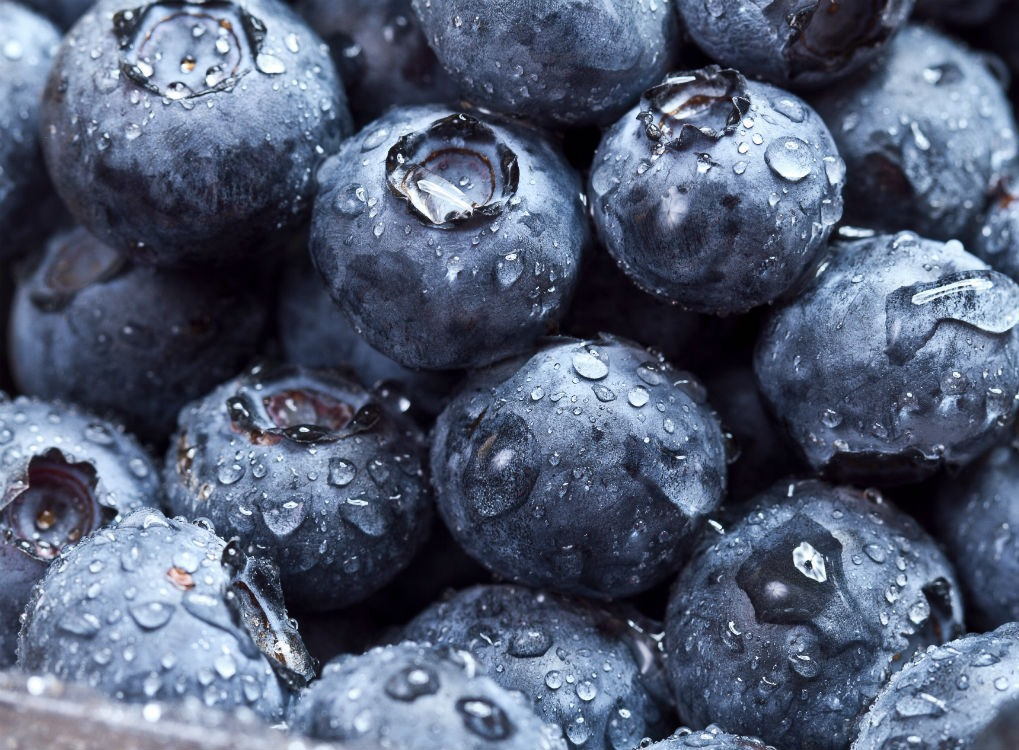 Blueberries, great food for your brain